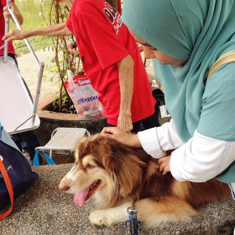 "Program ""I Want To Touch A Dog"" Beri Peluang Orang Islam Pegang Anjing!"